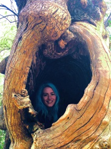 Ich im Wunderbaum, Inchmahome Priory